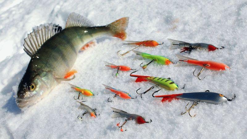 Лучшие уловистые балансиры на окуня зимой: цвета, размеры, модели