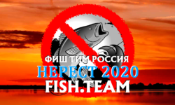 Нерест: Нерестовый запрет 2020 по всем регионам России